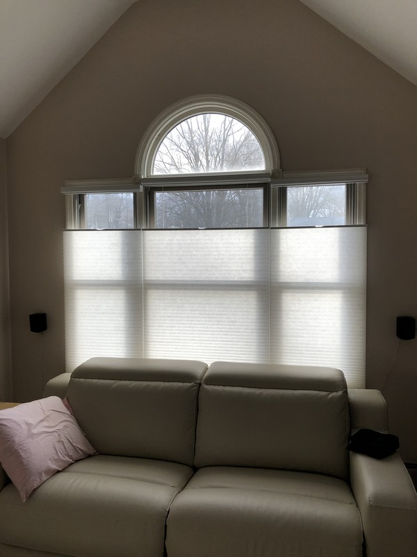 Graber Cordless Cell Shades with Top-Down/Bottom-Up in Emerson NJ