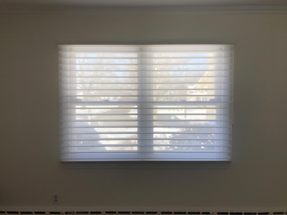 Hunter Douglas Nantucket Silhouettes and Graber Cellular