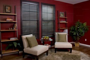 black blinds in the living room